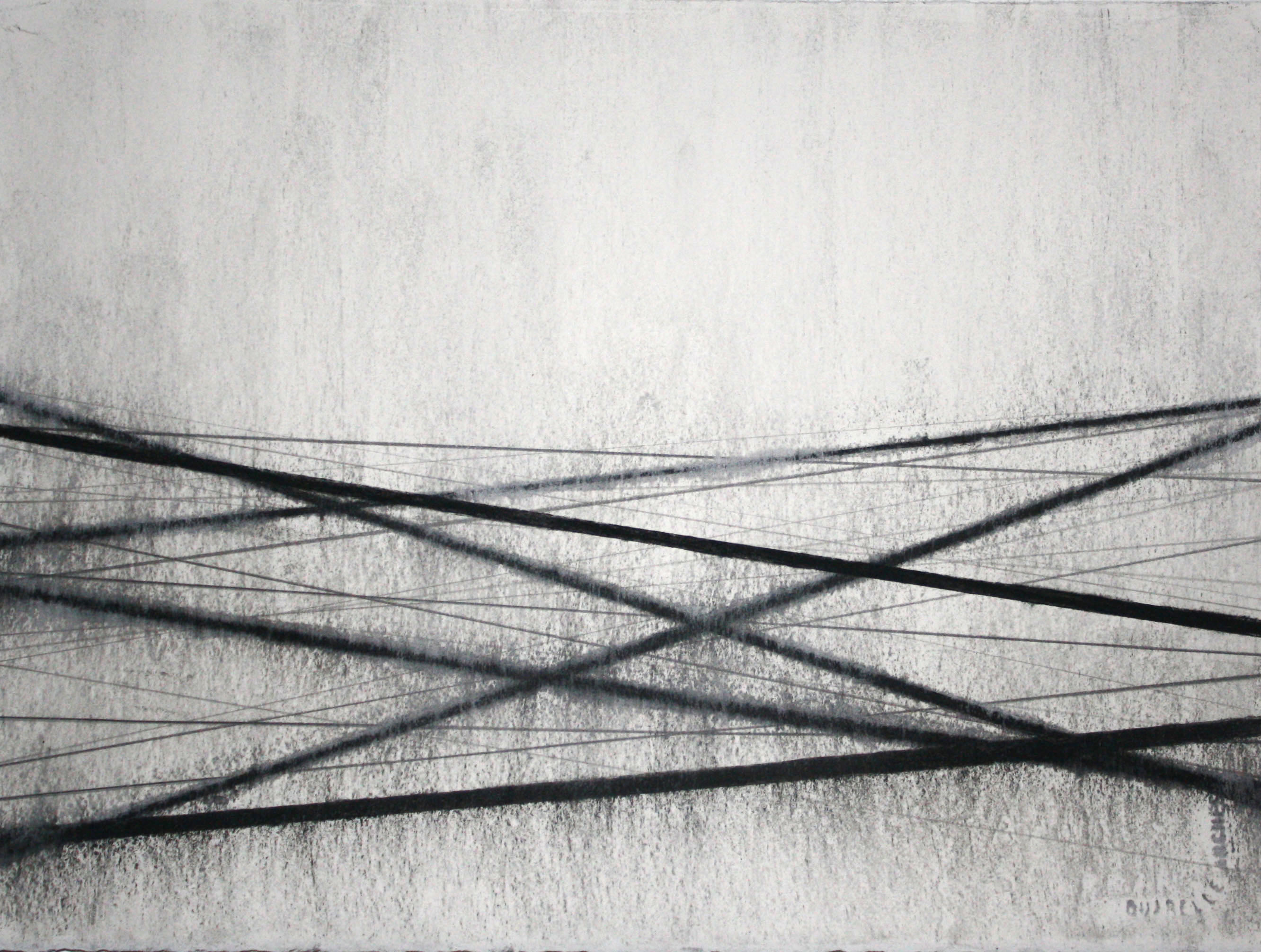 Drawing by Fiona Robinson, charcoal and graphite on paper